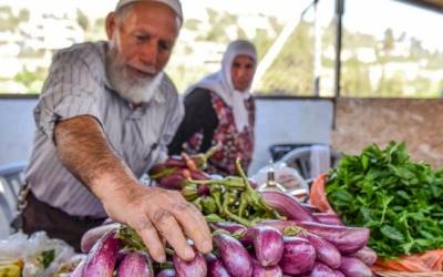 Battir Eggplant Festival